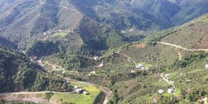 Yağlıdere Koçlu Köyü
