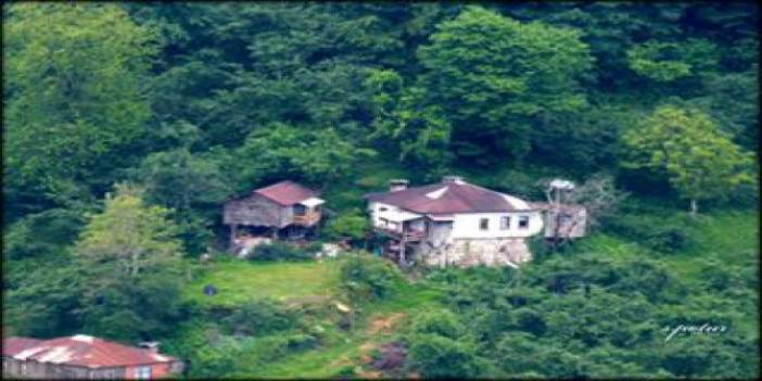 Giresun Alınca Köyü