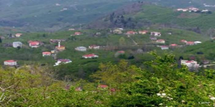 Giresun Camili Köyü
