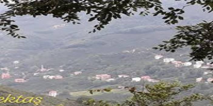 Giresun Esentepe Köyü