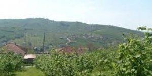 Akçakoca Çiçekpınar Köyü