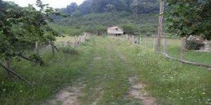 Akçakoca Dilaver Köyü