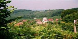 Akcakoca Kınık Köyü
