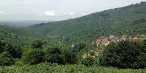 Akçakoca Küpler Köyü