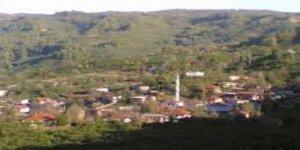 Cumayeri Subaşı Köyü