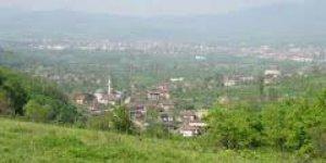 Cumayeri Yenitepe Köyü