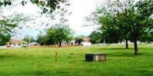 Çilimli Dikmeli Köyü