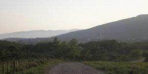 Çilimli Kiraztarla Köyü