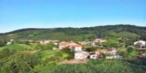 Gölyaka Bakacak Köyü
