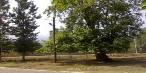 Gölyaka Hacısüleymanbey Köyü