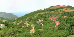 Cide Sakallı Köyü
