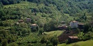 Cide Yeniköy Köyü