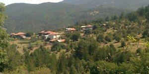 Daday Boyalıca Köyü