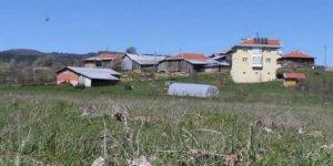 Daday Çavuşlu Köyü