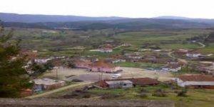 Daday Davutköy Köyü