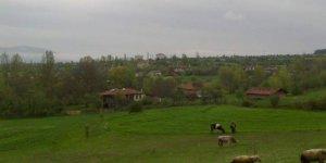 Daday Dereköy Köyü