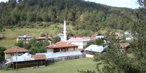 Daday Kayı Köyü