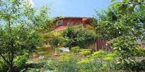 Daday Kızılörencik Köyü