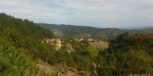 Daday Okluk Köyü