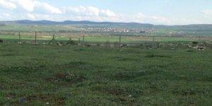 Devrekani Akçapınar Köyü