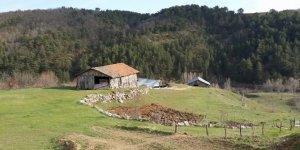 Devrekani Asarcık Köyü