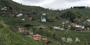 Gümüşova Dededüzü Köyü