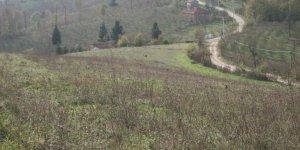 Gümüşova Halilbey Köyü