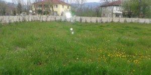 Gümüşova Kahveleryanı Köyü