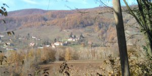 Gümüşova Soğuksu Köyü