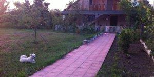 Gümüşova Sultaniye Köyü