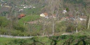 Kaynaşlı Tavak Köyü