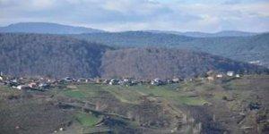 Kaynaşlı Çakırsayvan Köyü