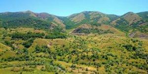 Pülümür Nohutlu Köyü