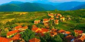Yığılca Gökçeağaç Köyü