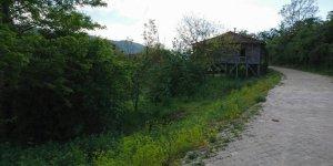 Yığılca Güney Köyü