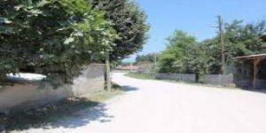 Düzce Gümüşpınar Köyü