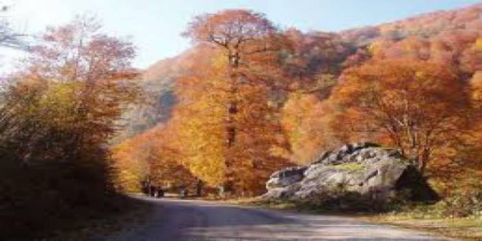 Düzce Kaledibi Köyü