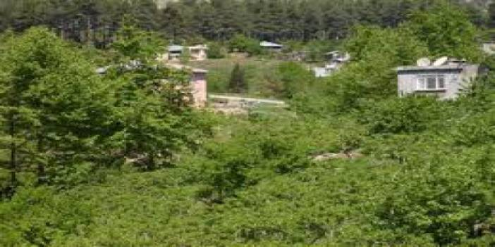 Düzce Karaçalı Köyü