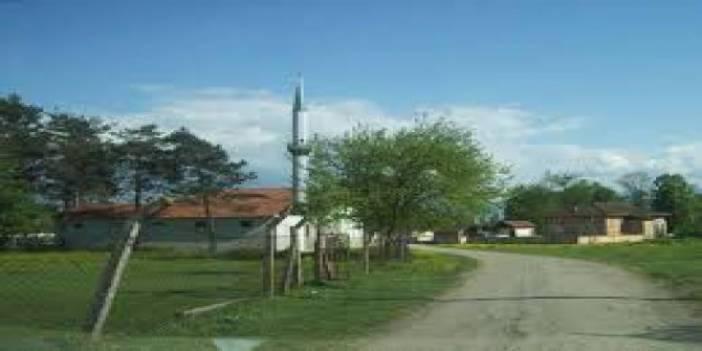 Düzce Kaymakçı Köyü