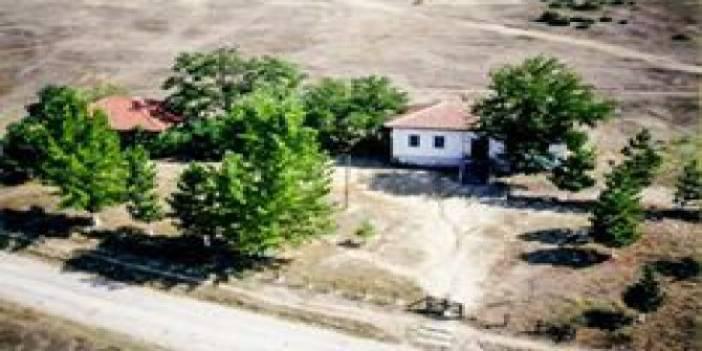 Düzce Kazukoğlu Köyü