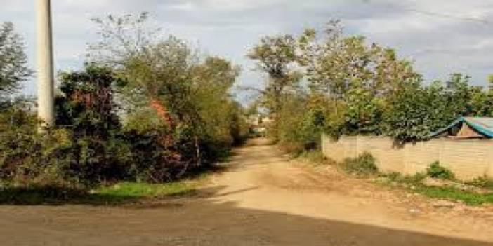 Düzce Muradiyemengencik Köyü
