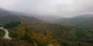 Düzce Yeşilçimen Köyü