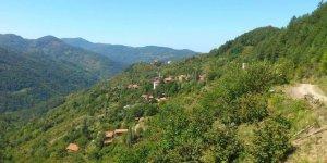 Doğanyurt Boğazcık Köyü