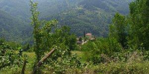 Doğanyurt Haskavak Köyü