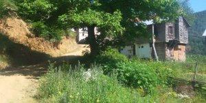 Doğanyurt Köfünambarı Köyü
