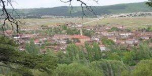 İnönü Seyitaliköyü Köyü