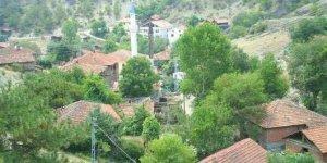 Hanönü Gökçeağaç Köyü