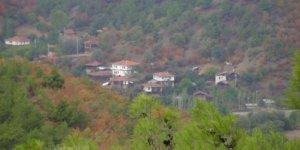 Hanönü Yeniköy Köyü