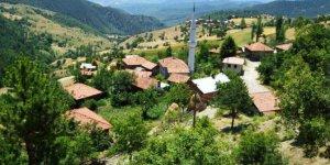 Hanönü Yılanlı Köyü