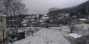 İnebolu Çiçekyazı Köyü